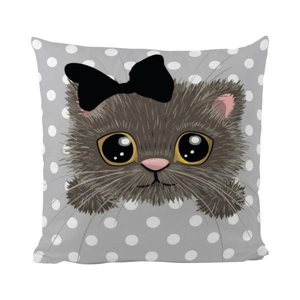 Vankúš Mr. Little Fox Cat Cutie, 50x50cm