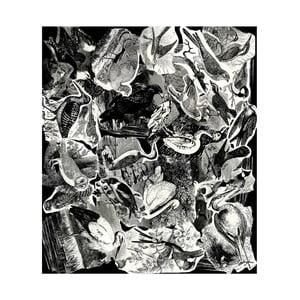 Koberec Casa Di Bassi Birds, 230 x 200 cm