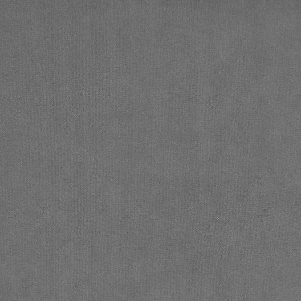 Sivá leňoška Vivonita Nellie