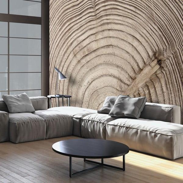 Veľkoformátová tapeta Bimago Wood Grainl, 400×280cm