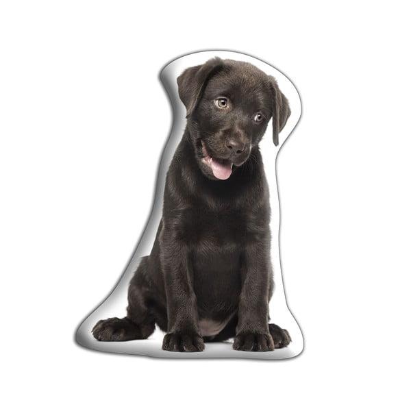 Vankúšik Adorable Cushions Čokoládový labrador