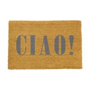 Rohožka Artsy Doormats Ciao Grey, 40 × 60 cm