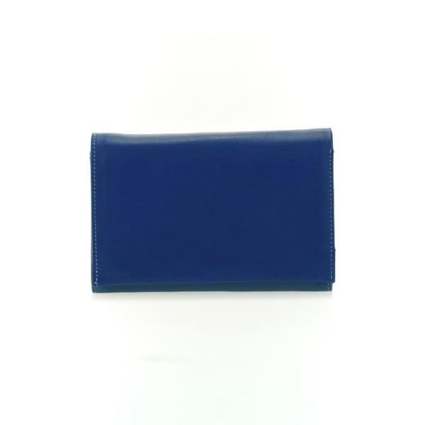 Peňaženka a obal na kreditné karty Blue