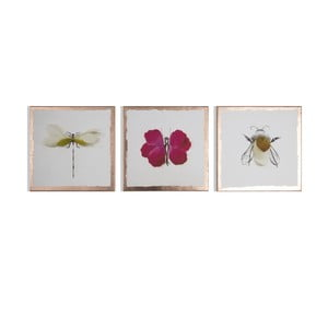 Viacdielny obraz Graham & Brown Beautiful Bugs, 30 × 30 cm