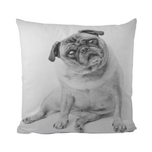 Vankúš Piggy Dog, 50x50 cm