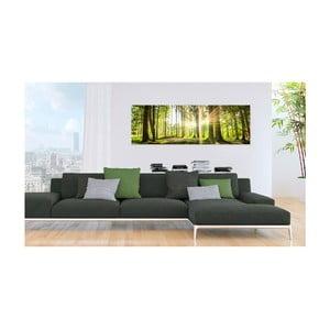 Obraz na plátne Bimago Daylight 135 x 45 cm