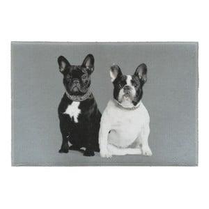Predložka French Bulldogs 75x50 cm