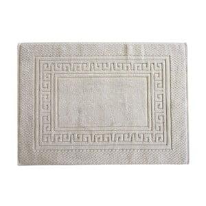 Predložka Basic Framsohn Grey, 50x70 cm