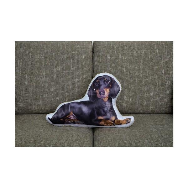 Vankúšik Adorable Cushions Jazvečík