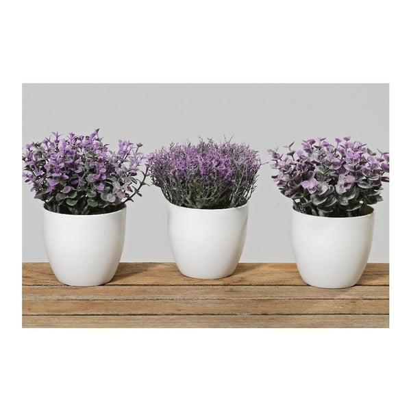 Sada 3 kvetináčov Potsie
