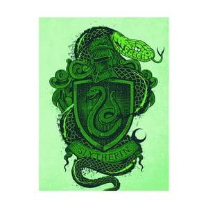 Obraz Pyramid International Harry Potter Slytherin Crest, 60 × 80 cm
