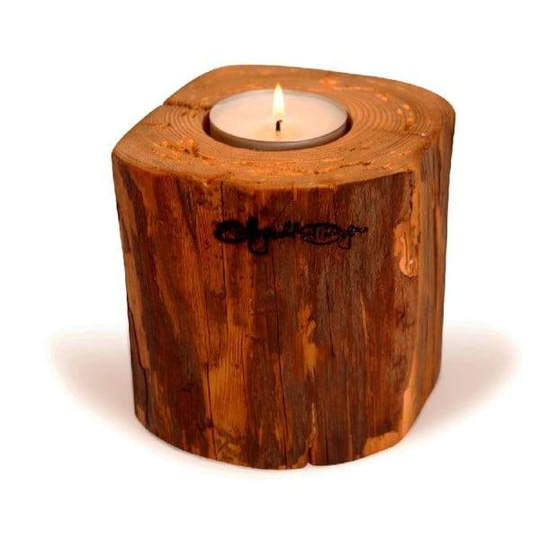 Svietnik Lumberjack II