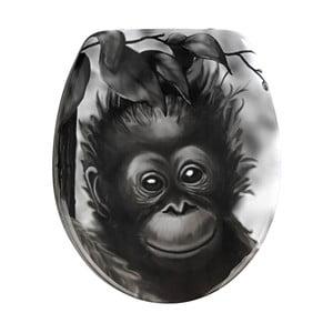 WC sedadlo Wenko Ape, 44,5 x 37,5 cm
