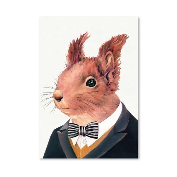 Plagát  Squirrel, 30x42 cm