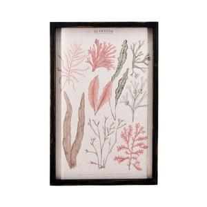Nástenný obraz Moycor Coral