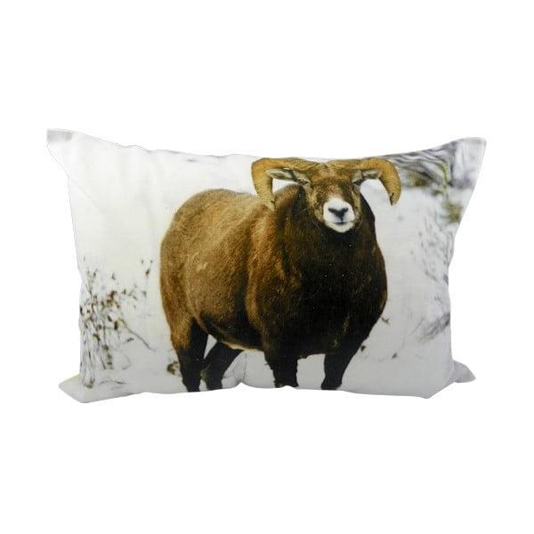 Vankúš Sheep Brown 50x35 cm