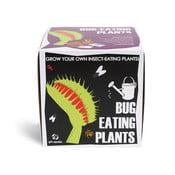 Pestovateľský set so semienkami mäsožravej rastliny Gift Republic Bug Eating Plants