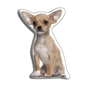 Vankúšik Adorable Cushions Ušatá čivava