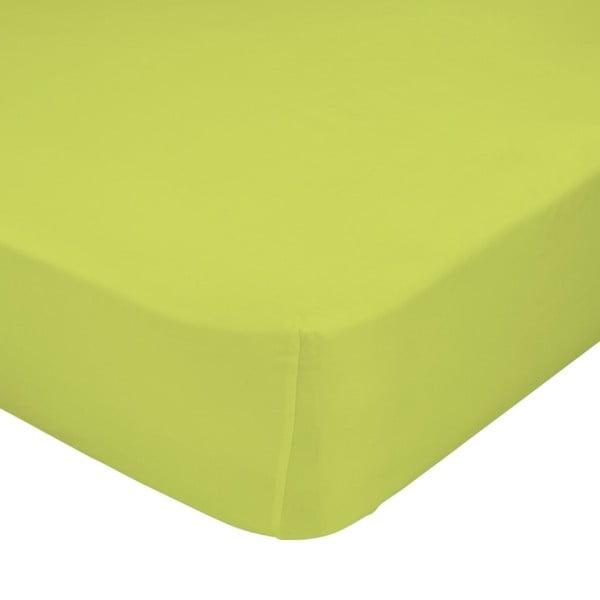 Zelená elastická plachta HF Living Basic, 90 x 200 cm