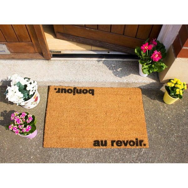 Rohožka Artsy Doormats Bonjour Au Revoir, 40x60cm