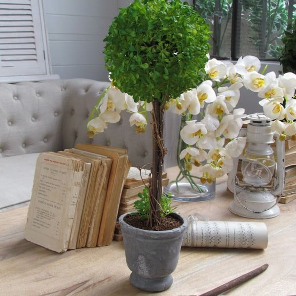 Dekorácia Topiary Art