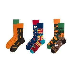 Set ponožiek v darčekovom balení Many Mornings Harvest, veľ. 39–42
