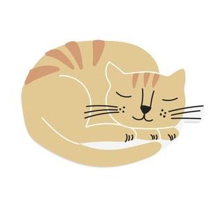 Oranžová rohožka Really Nice Things Cat Ball, 70 × 40 cm