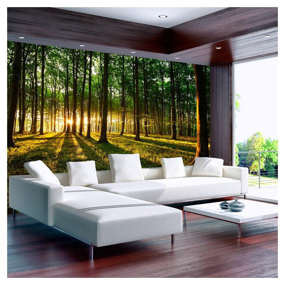 Veľkoformátová tapeta Bimago Morning, 400 × 280 cm