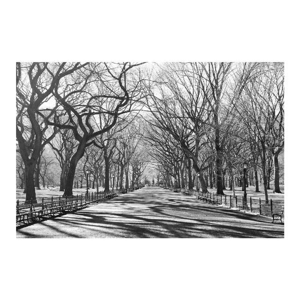 Maxi plagát Poets Walk NY, 175x115 cm