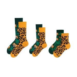 Rodinná sada 3 párov ponožiek v darčekovom balení Many Mornings El Leopardo Grand
