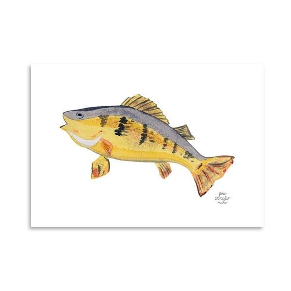 Autorský plagát Fish, 30x42 m