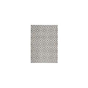 Sivo-biely koberec Think Rugs Matrix Grey White, 120x170cm