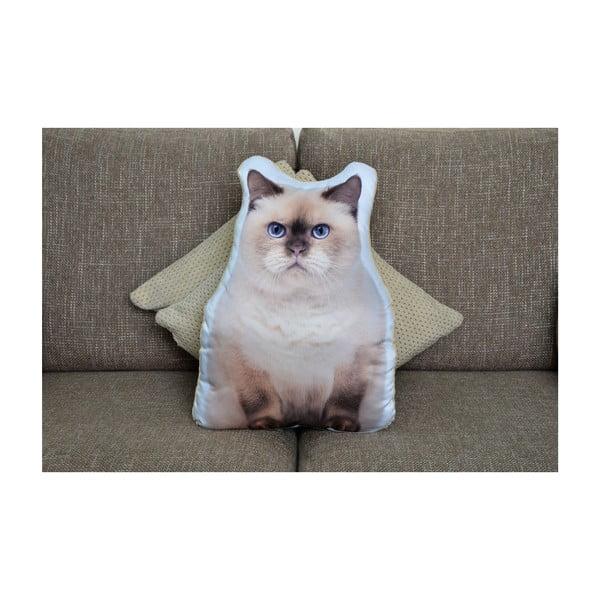 Vankúšik Adorable Cushions Britka