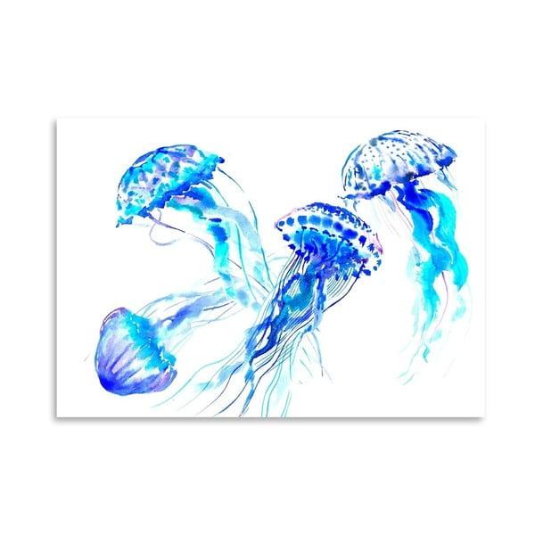 Plagát Jellyfish