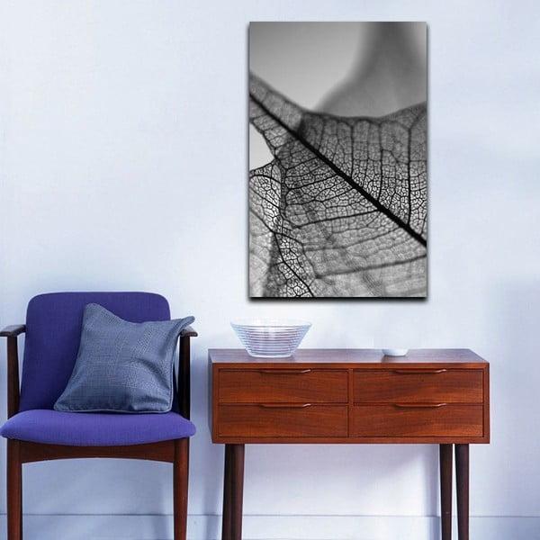 Obraz Black&White Microscope, 45 x 70 cm