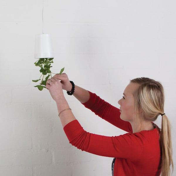 Sada 2 kvetináčov hore nohami Esschert Design Surprise, výška 11 cm