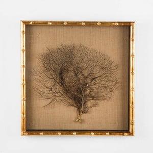 Fotorám z dreva Thai Natura, 49×49 cm