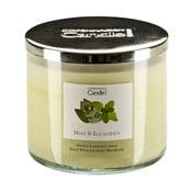 Aromatická sviečka s vôňou mäty a eukalyptu Copenhagen Candles, doba horenia 50hodín