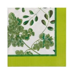 Sada 20 papierových obrúskov Ulster Weavers Foliage