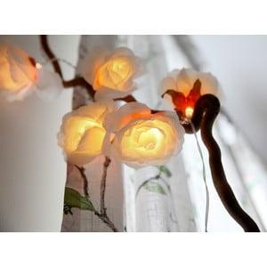 Osvetlenie Big Roses