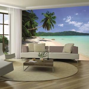 Veľkoformátová tapeta Palmová pláž, 315x232 cm