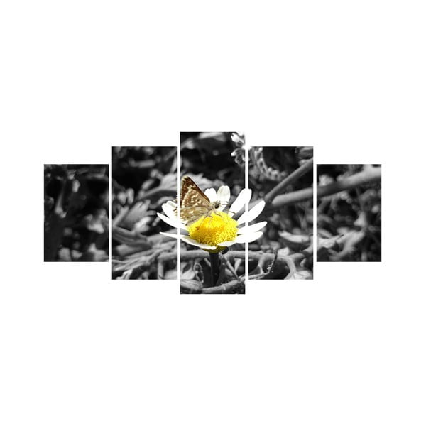 Viacdielny obraz Black&White no. 62, 100x50 cm