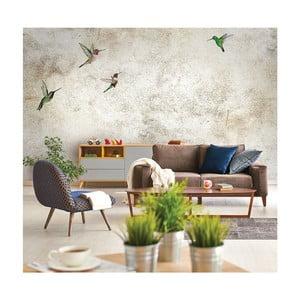 Veľkoformátová nástenná tapeta Vavex Birds, 368×280 cm