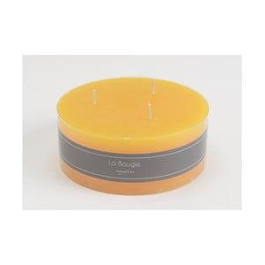 Sviečka 3Wick Yellow