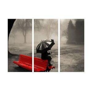 3-dielny obraz Samota v daždi