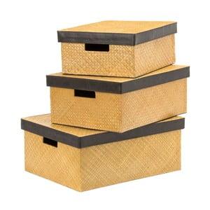 Set 3 boxov Pandanus