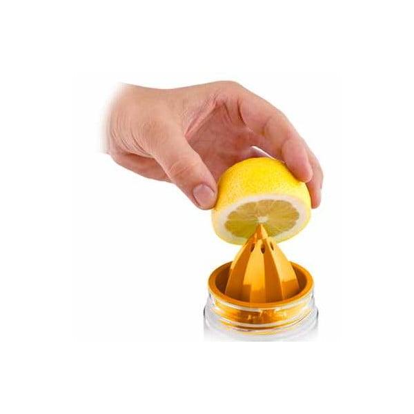 Citruszinger, fľaša na vodu a citrusy, ružová