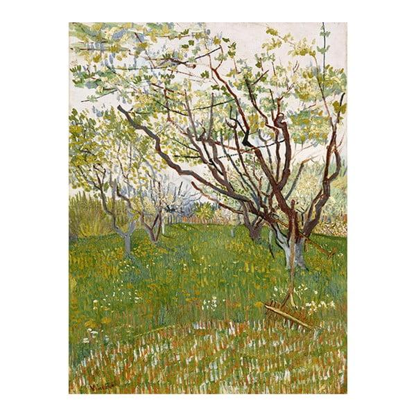 Obraz Vincenta van Gogha- Flowering Orchards, 50x40 cm