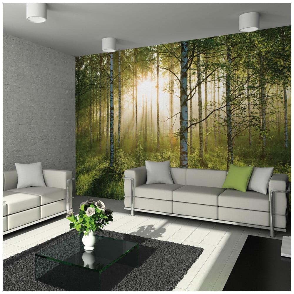 Veľkoformátová tapeta Forest, 315 x 232 cm