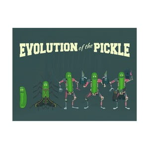 Obraz Pyramid International Rick and Morty Evolution of The Pickle, 60 × 80 cm